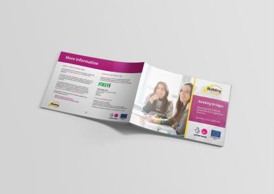 Bold Portfolio Building Bridges programme Guidelines 3